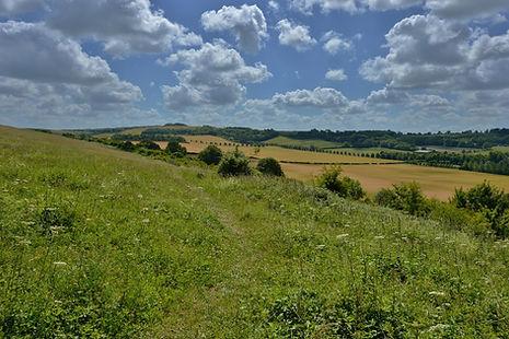 Magdellan Hill looking East.jpg