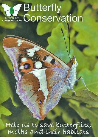 Butterfly Conservation advert.jpg
