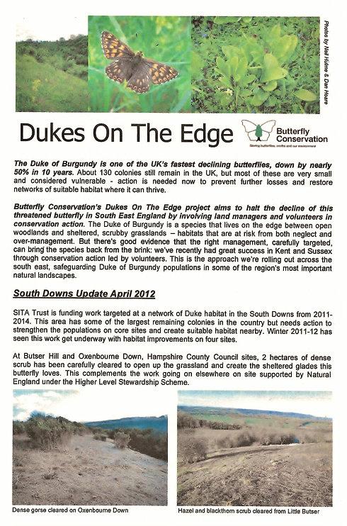 Dukes on the Edge 10006.jpg