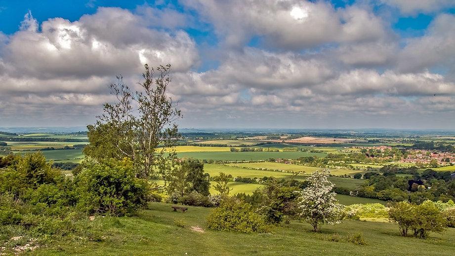 Watlington Hill Bucks 1.jpg