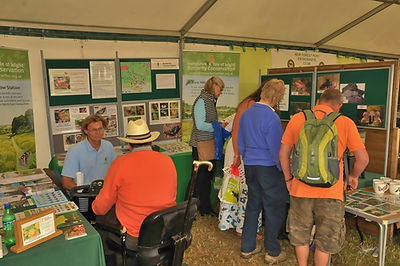 New Forest show Butterfly stand July 201
