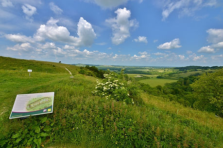 Old Winchester Hill June 2015.jpg