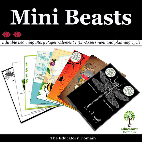 Mini Beasts Learning Story Pack