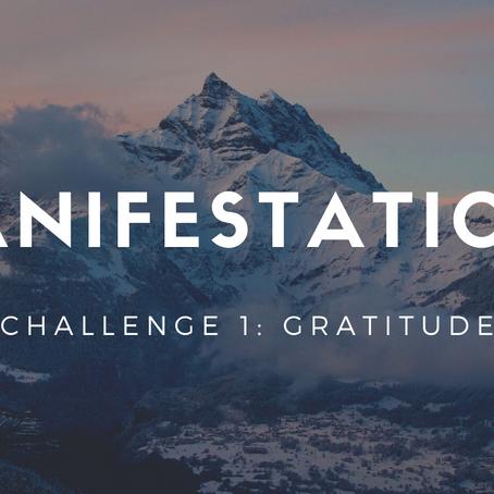 Manifestation 101: Gratitude