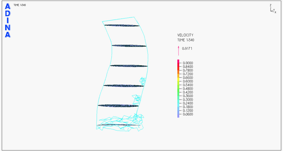 brachio-velocity.avi