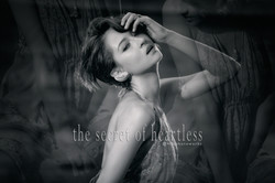 The Secret of Heartless