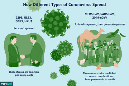 Different Types of Coronavirus
