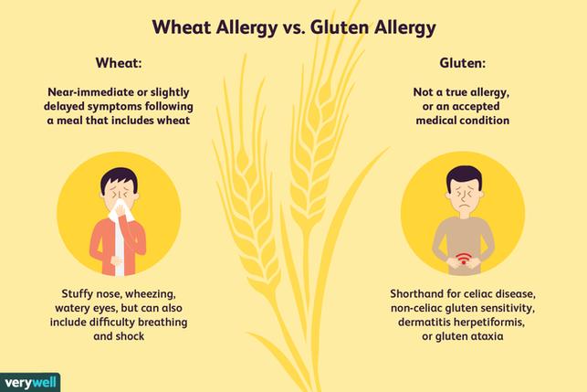 Wheat Allergy vs. Gluten Allergy