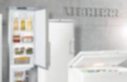 Gastro Tiefkühltruhe Hauhaltskühlgeräte Weinsave Liebherr