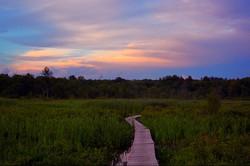Boardwalk, White Memorial Park, Litchfield, CT