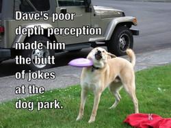 Dogpark Doofus