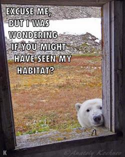 Receding Habitat
