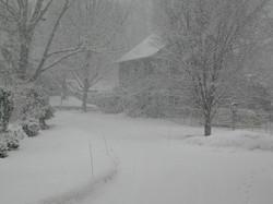 Snowfall on the Path