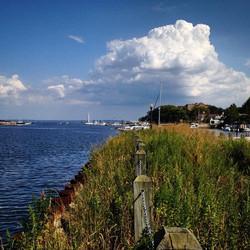 Northwest View of the Harbor