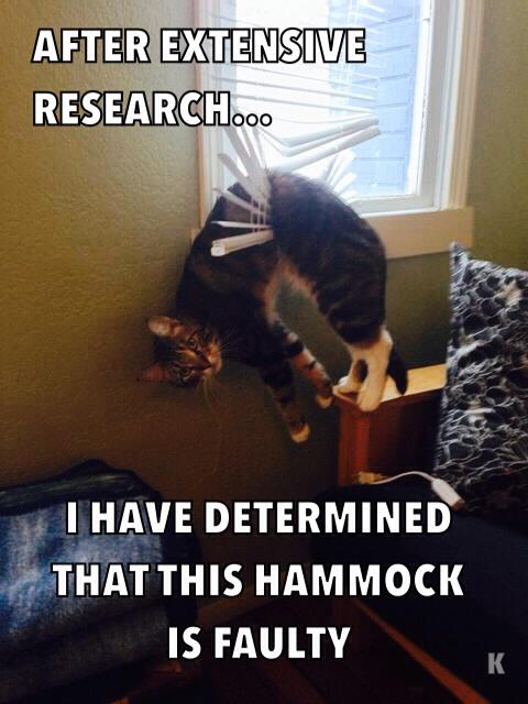 Scientific Study