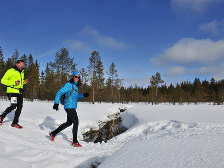 Mon défi trail blanc en Laponie !