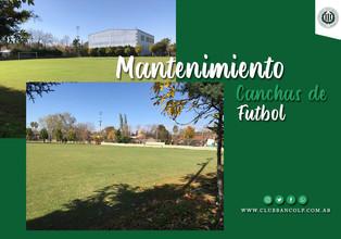 Mantenimiento | Sigue el mantenimiento de las canchas de fútbol