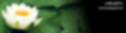 スクリーンショット 2019-05-25 7.40.25.png