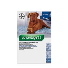 Advantage II pour chiens de plus de 25 kg Bayer