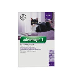 Advantage II pour chats de plus de 4 kg Bayer