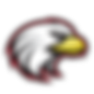 Focus Learning Logo.webp