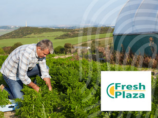 FreshPlaza: Provenance Verification in the Global Fruit and Vegetable Sector