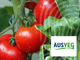 AUSVEG: Scientifically safeguarding the value of premium produce