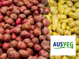 AUSVEG: Bridging the Gap Between Farm and Packhouse with Provenance Verification Technology