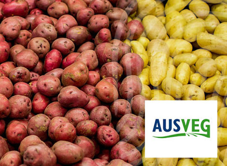 Bridging the Gap Between Farm and Packhouse with Provenance Verification Technology