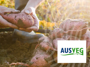 AUSVEG:Scientific Provenance Verification & Digital Traceability Technology – Why Both are Important
