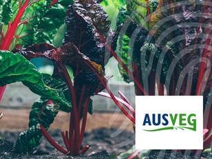 AUSVEG: Vegetables Australia magazine editorial feature
