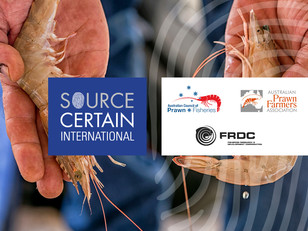 SCI announces partnership with Australian Prawn Industry; ACPF, APFA and FRDC