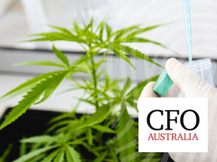 CFO Magazine: High Growth? Is Medicinal Cannabis Australia's Next Boom Export?