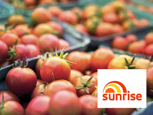 Sunrise Channel 7: fighting food fraud