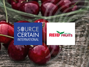 SCI Announces Partnership with Reid Fruits Cherry Producer