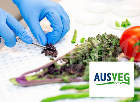 Source Certain Supporting the Supply Chain of Australia's Vegetable Industry in More Ways Than One