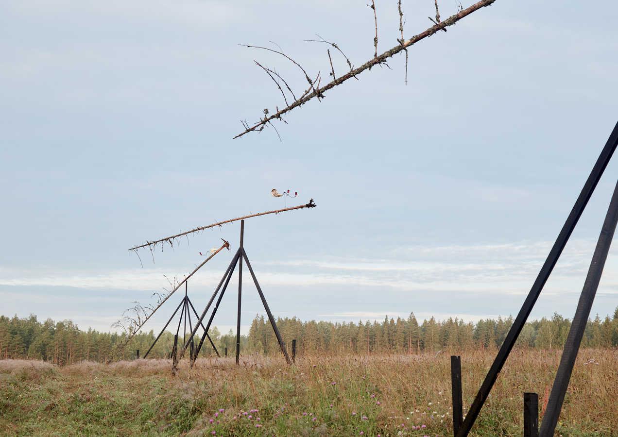 """AUSTRIS MAILĪTIS Kinētiska instalācija """"Vēja Vērotāji"""" 2020"""