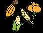 AgrobiodiversidadAW.png