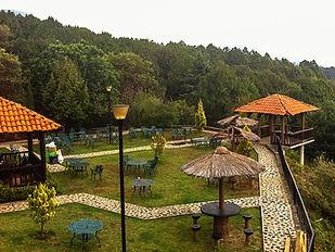 ParqueVenados_CP_edited_edited.jpg