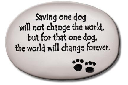 "3.5""x5""x1  ""Saving one dog will not change the world..."""