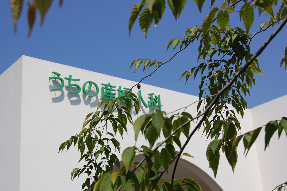 DSC_0144 (1).JPG