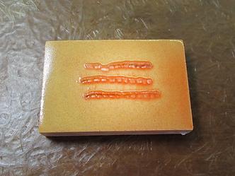 真珠用外套膜の切片(ピース)