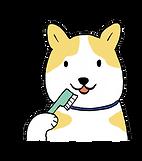 ともみっこ歯科ハミガキ画像