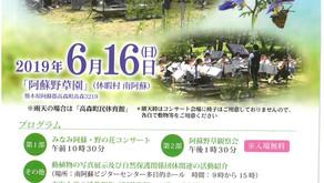 野の花コンサート開催について