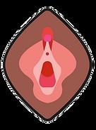 vaginal.png