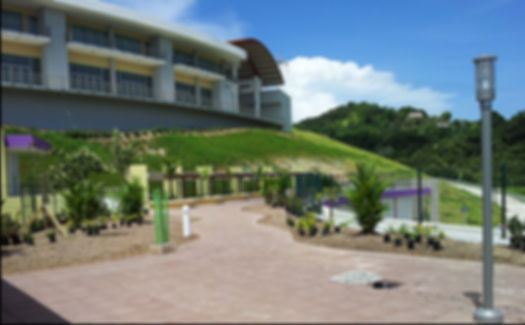 Yabucoa Green Roof, GreenInnovations