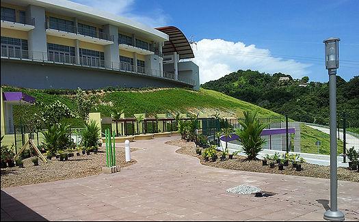 Yabucoa Green Roof, GreenInnovations