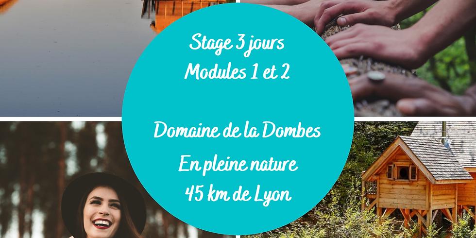 Stage 3 jours Modules 1 et 2 Ennéagramme