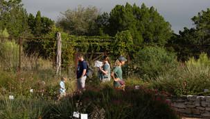 Hardberger Park held Pollinators in the Garden event