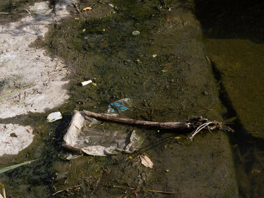 SARA Battles Litter in the San Antonio River